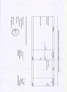 balance sheet - FY 2012-2013 (sheet 2)